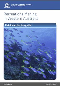 State wide fish identification guide